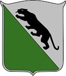 Combat Team
