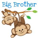 Big Sister Big Brother