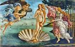 Birth Venus