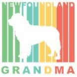 Newfoundlands Dog