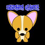 Chihuahua Dog Grandpa