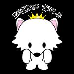 American Eskimo Dogs Eskies Rule