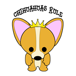 Chihuahua Dogs Rule