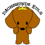 Dachshund Dogs Rule