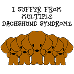 I Suffer From Multiple Dachshund Syndrome