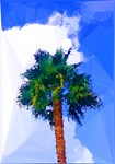 Palm Tree Clouds Low Poly
