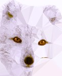 Young Fox Low Poly Triangles