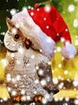 Christmas Owl Santa Hat Snow