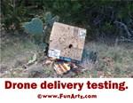 Drone Delivery Failure