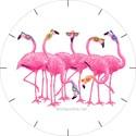 Flamingos Basic Clocks