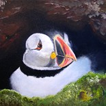 Puffin Lovers