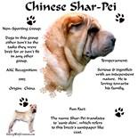 I Love My Chinese Shar Pei