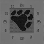 Bears_N_Leather