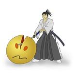 Iaido Martial Arts