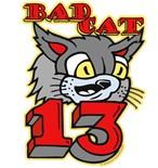 Bad Cat Tagger