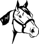 Horse Lover