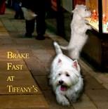 Breakfast Tiffany's
