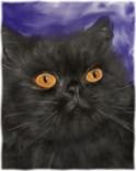 Persian Cat Art