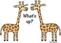 Giraffe Thong Underwear