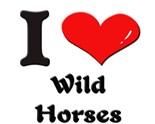 Wild Horses Sundays