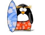 Hawaiian Penguin