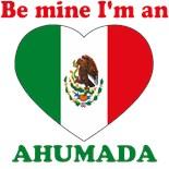 Mexico Mexican Mexicano Latino