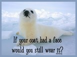 Seal Kill