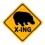 X Ing