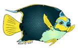 Manatee Mermaid Designs