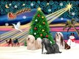 Lhasa Apso Christmas
