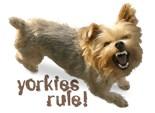 Yorkies Rule