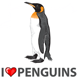 I Love Penguins Pint  Gifts