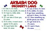 Akbash