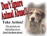 Animals Action