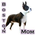 Boston terrier Travel Mugs