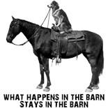 Equine Humor