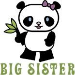 I'm Big Sister