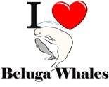 Beluga Whales Endangered