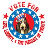 Time Vote