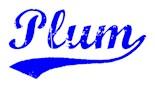 Plum Pennsylvania
