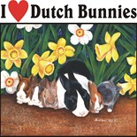 Dutch Bunnies