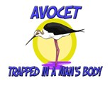 Avocet Desk Lamp