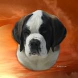 Saint Romney Patron Saint Dogs