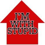 I'm Stupidly