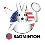 Badminton Designs