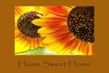 Burning Sunflowers