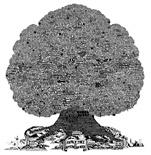 Burton Tree