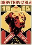 Vizsla Dog