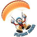 Flying Sport