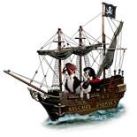 Boston Terrier Pirates